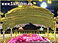 Baba Narinder Singh Sahib said that in the sacred presence of Baba Nand Singh Ji Maharaj...